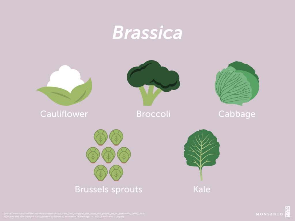 Ancestor_Appreciation_Day_v2_PM_Brassica_Facebook_or_Instagram