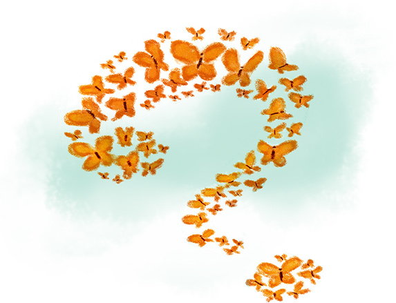Monarchs fly in a question mark formation