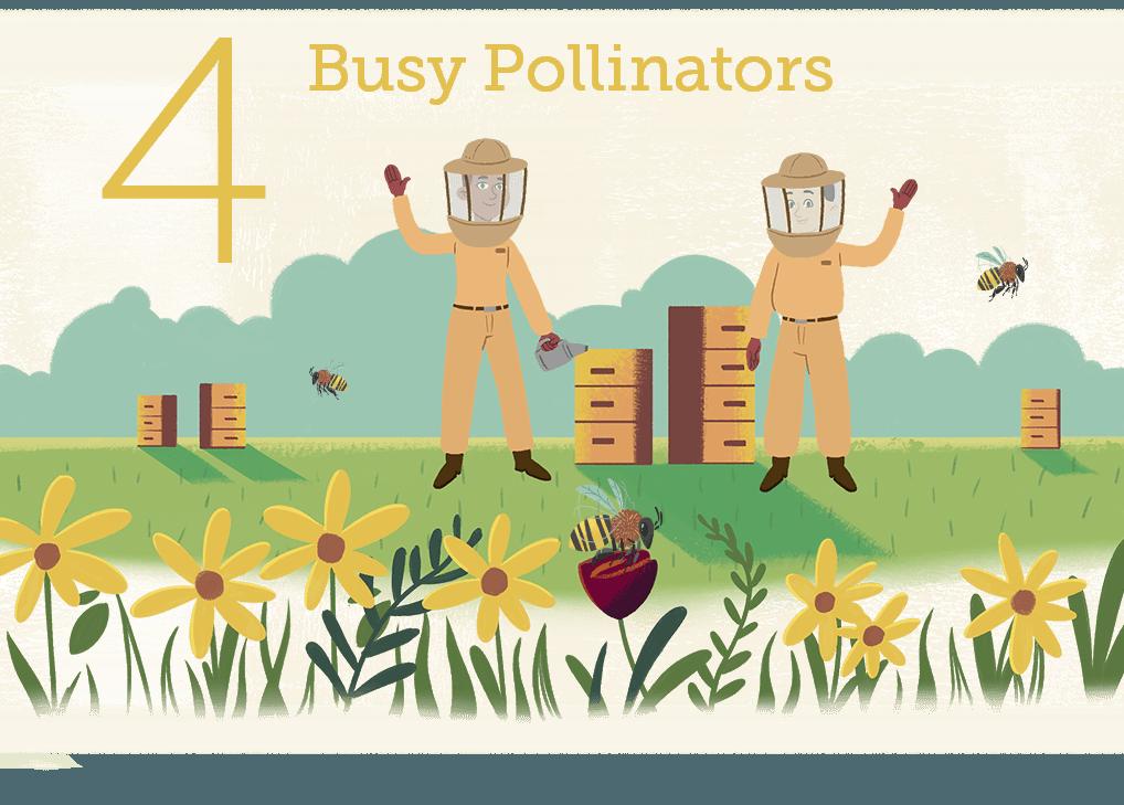 Busy Polinators