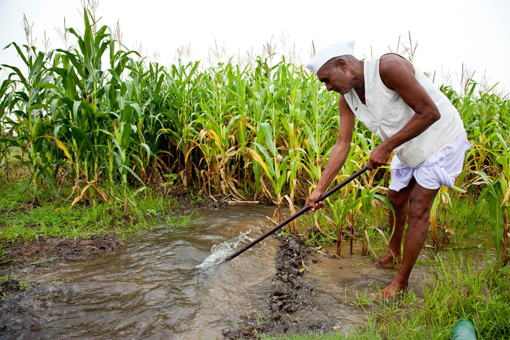 Corn Traditional Irrigation Push Water