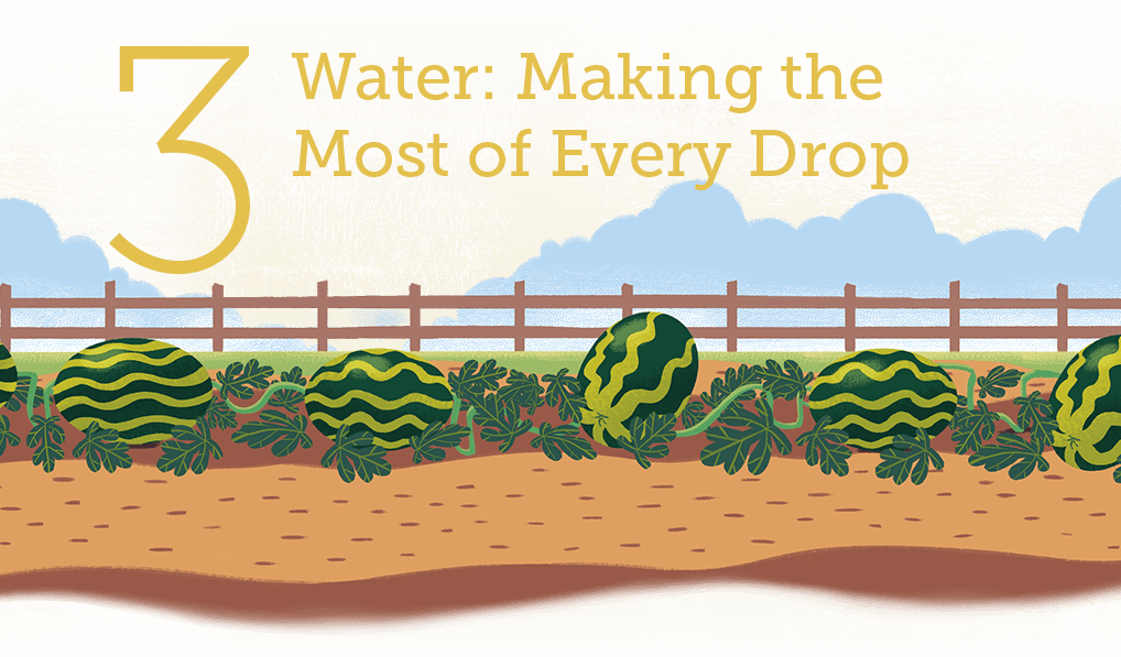Water - Making the Most of Every Drop